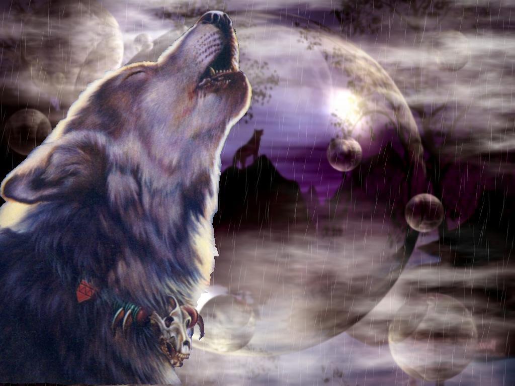 76 Wolves Desktop Wallpaper On Wallpapersafari