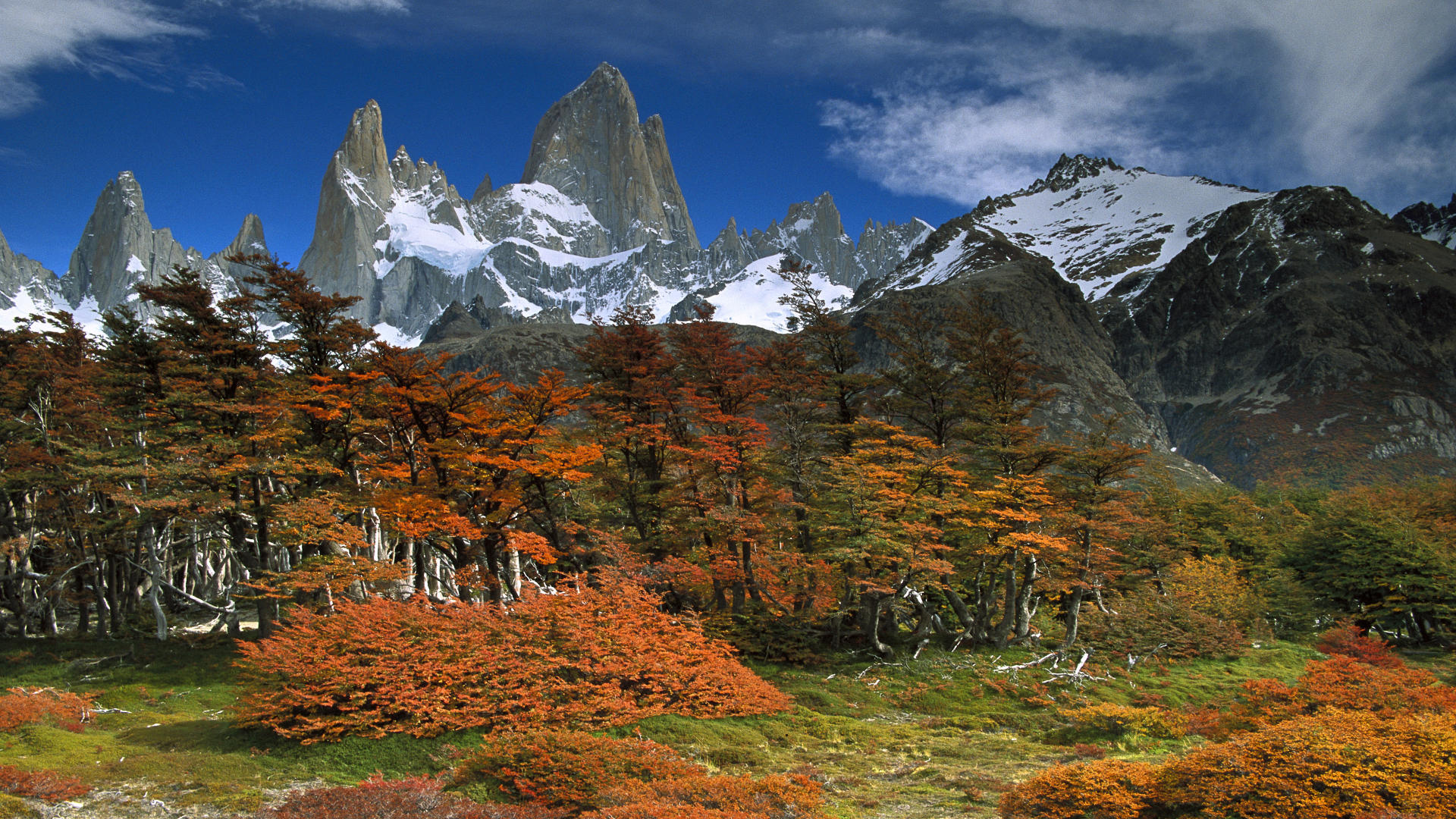 cool background backgrounds park patagonia argentina national 1920x1080