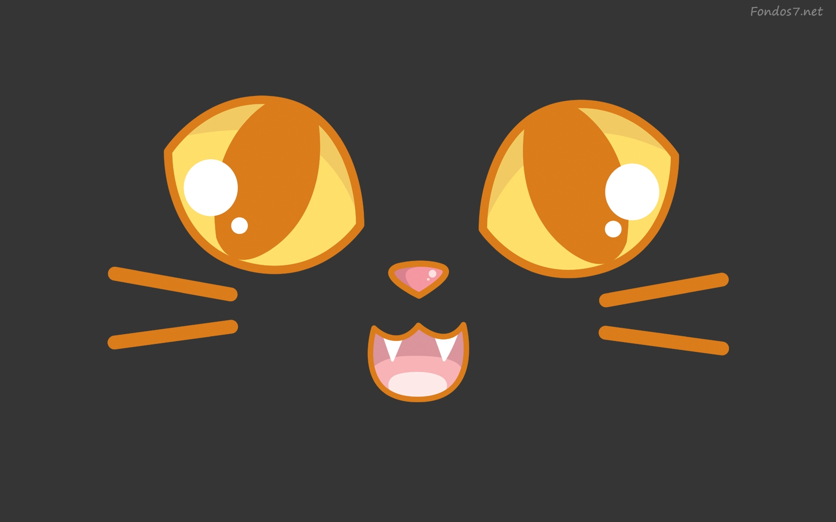 Descargar Fondos de pantalla cara de gato hd widescreen Gratis 1680x1050