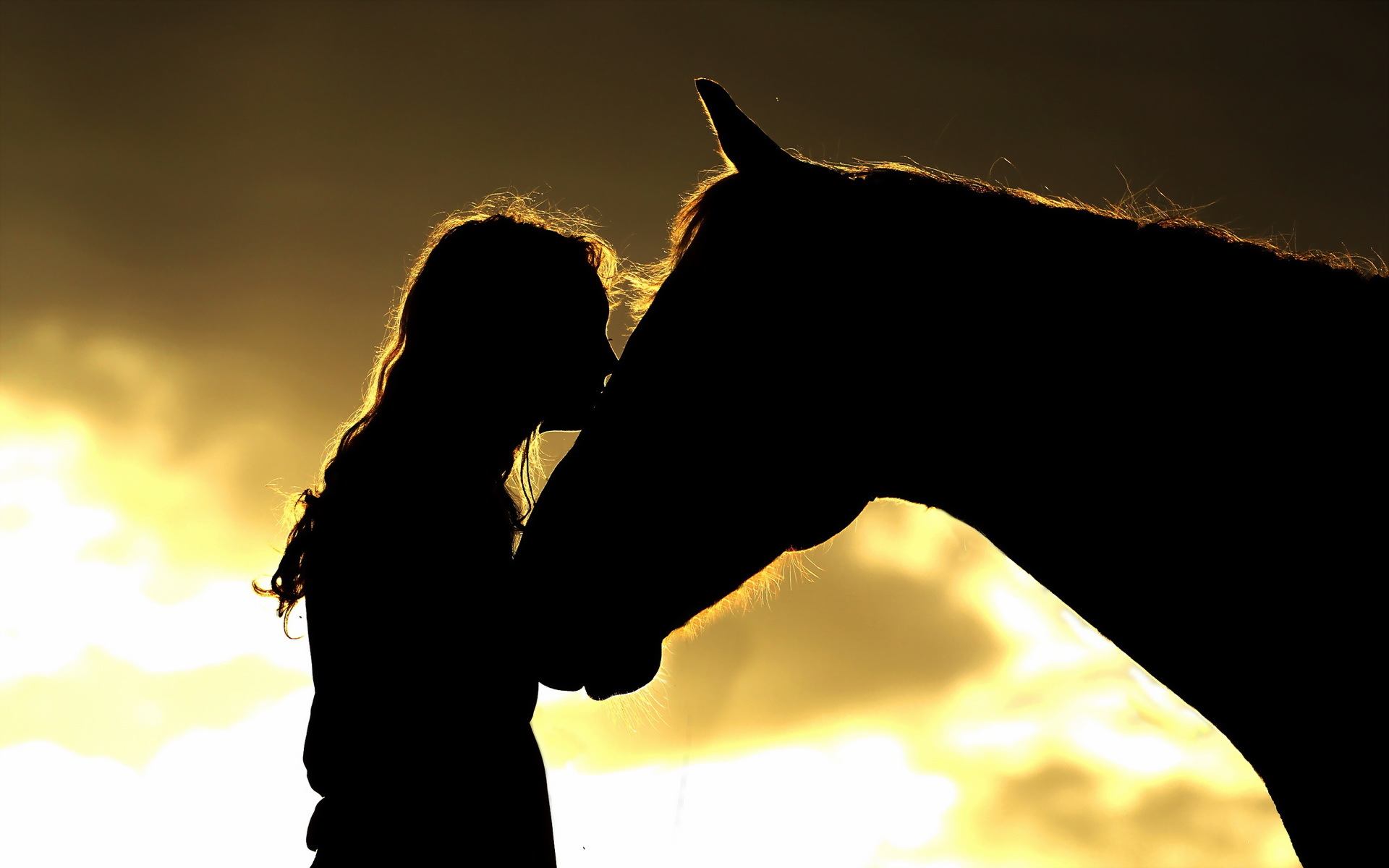 Wallpaper girl horse silhouettes wallpapers mood   download 1920x1200