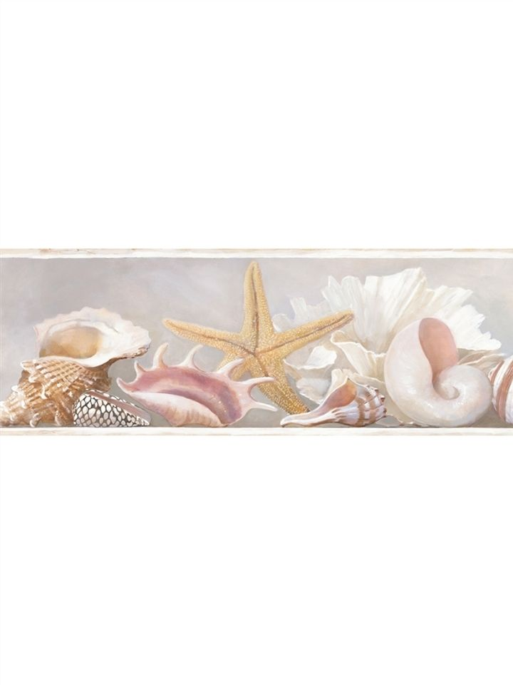 AZ5203BD Sea Shell Wallpaper Border Ocean Beach House eBay 720x960