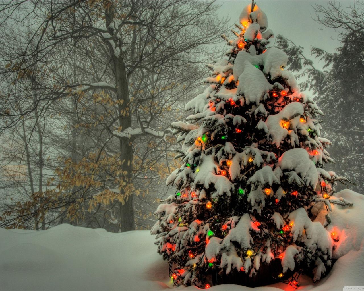 christmas tree outside Christmas items   jewelry Desktop Wallpaper 1280x1024