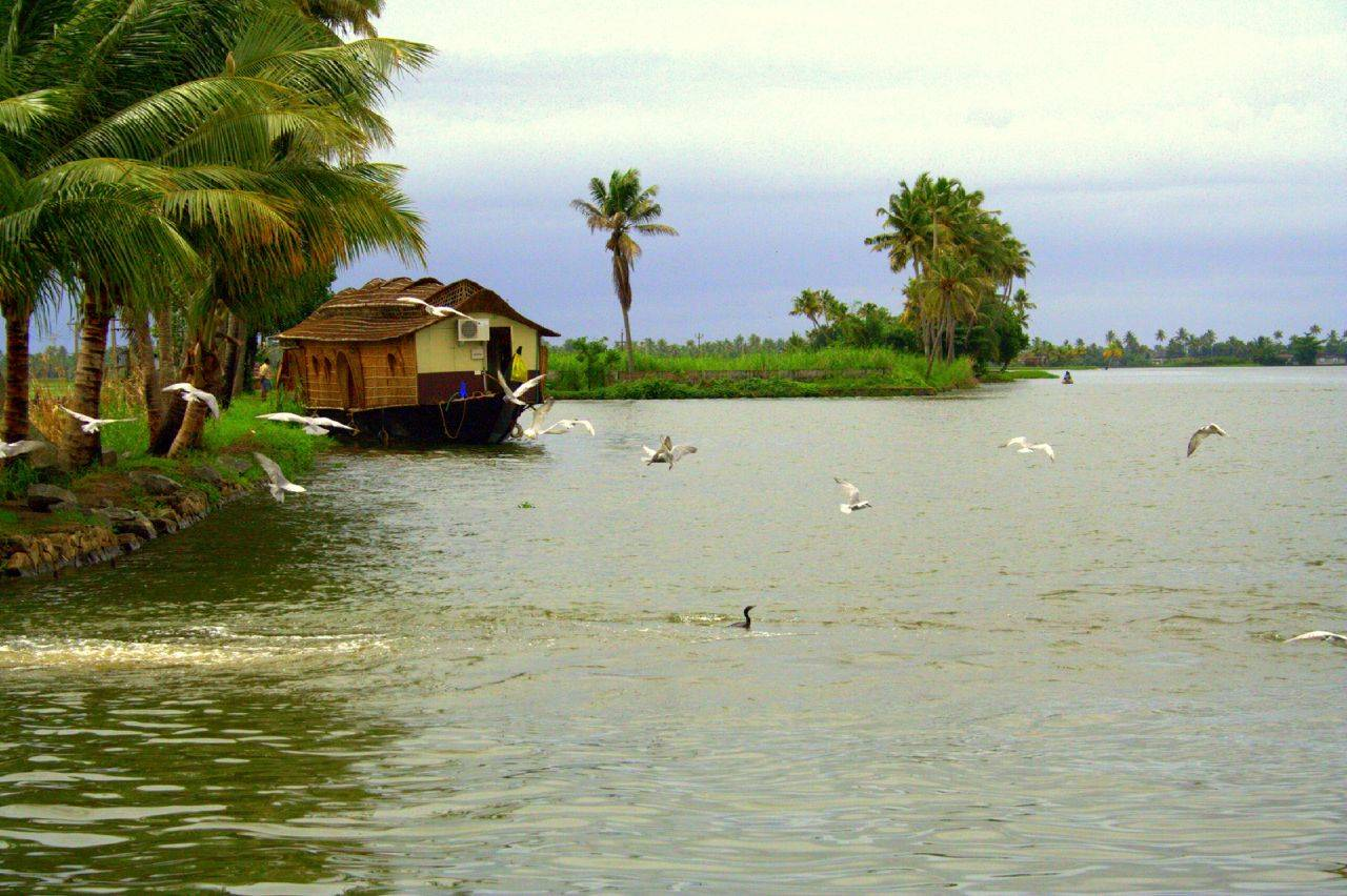 Tourism In Kerala 11948 Hd Wallpapers in Travel n World   Imagescicom 1280x852