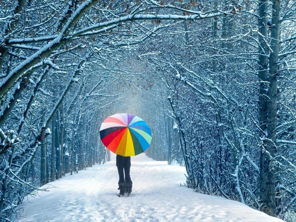 Winter Wallpaper   Winter Photo 36092407 1024x768