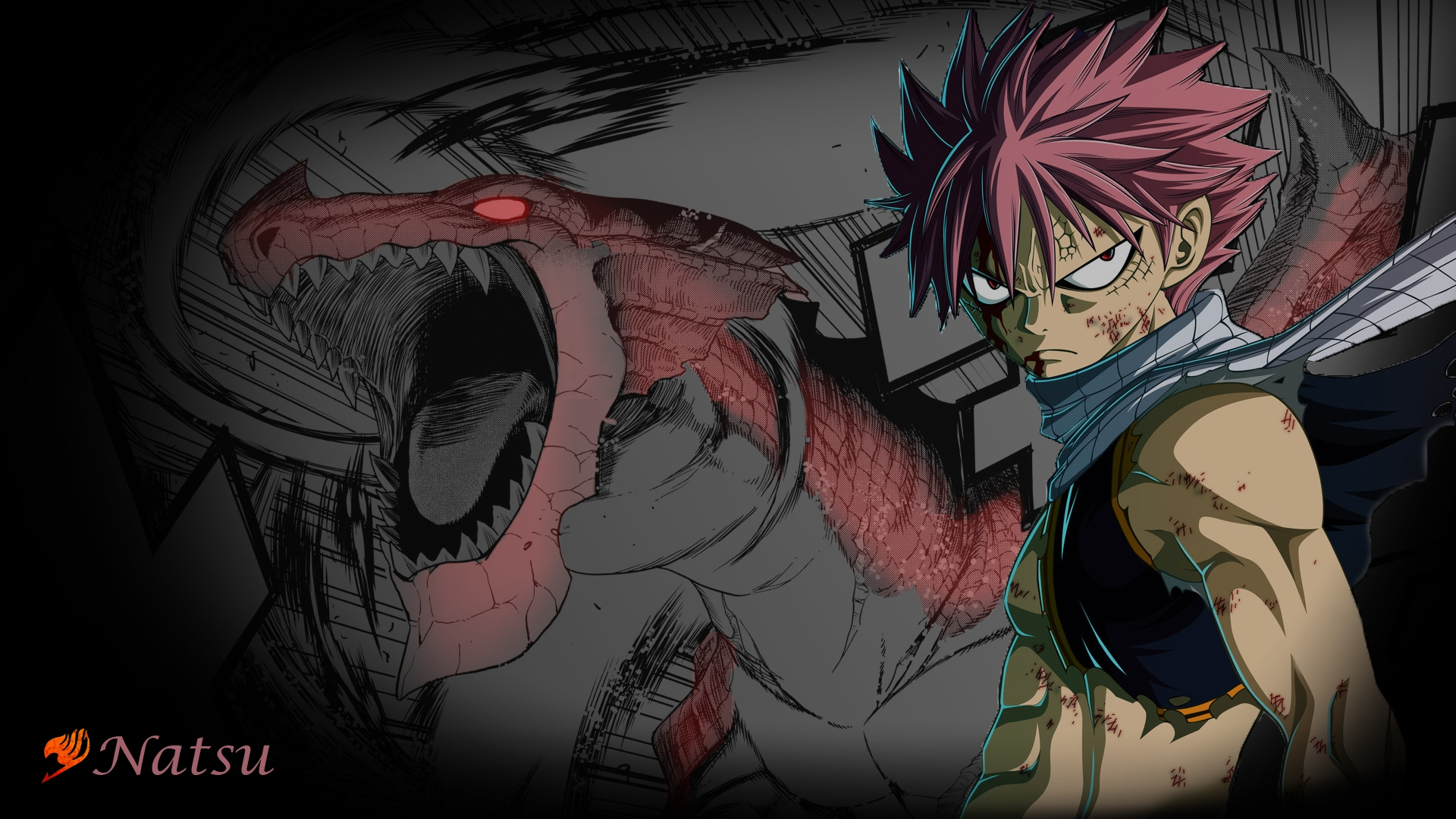 Fairy Tail Wallpapers   Fairy Tail Wallpaper 35304279 1920x1080