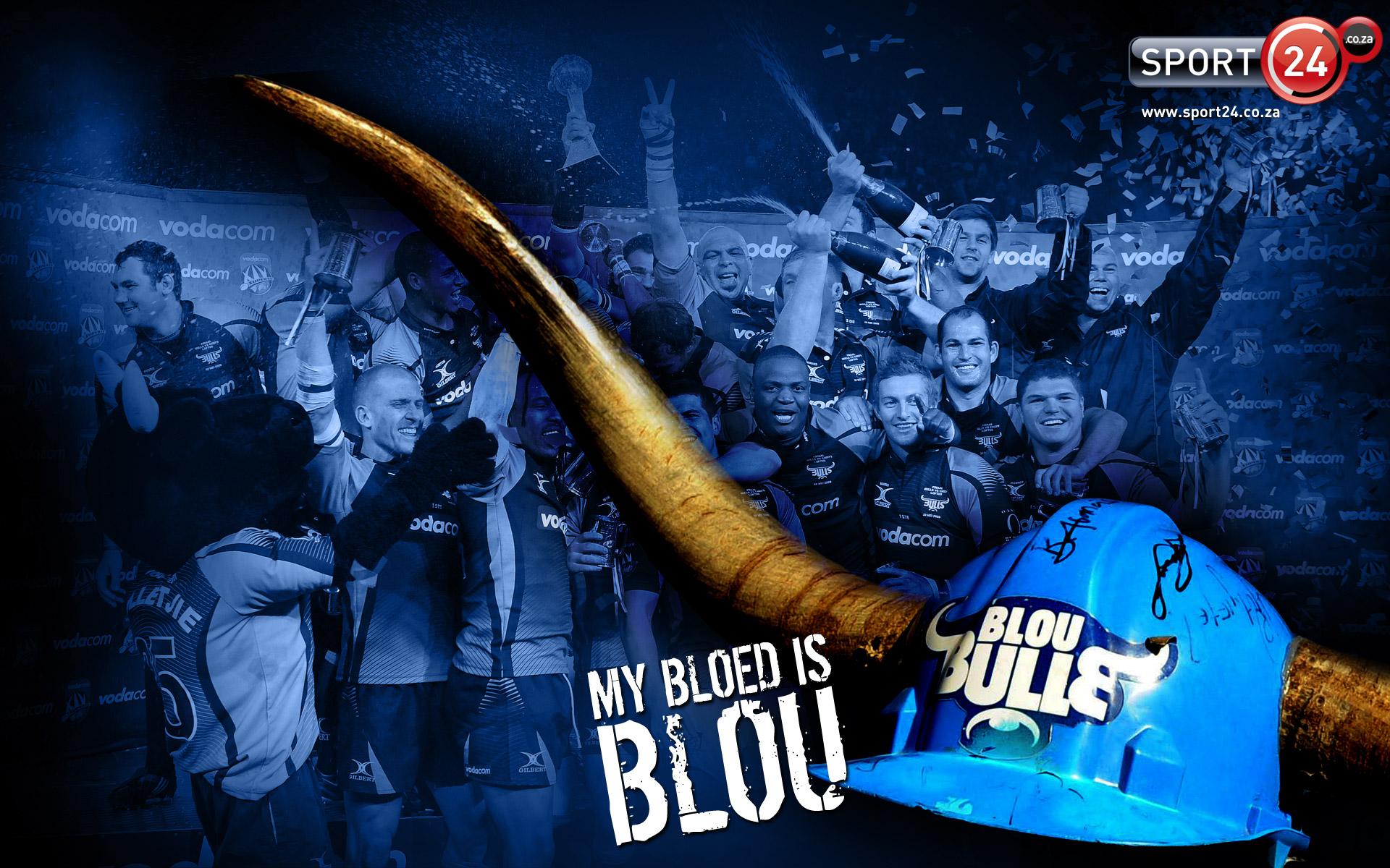 Blue Bulls wallpaper   162656 1920x1200