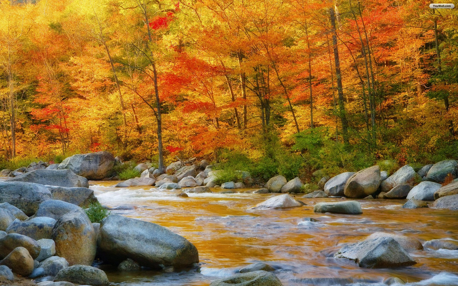 New Hampshire In Autumn Wallpaper   Wallpaperwallpapers 1920x1200