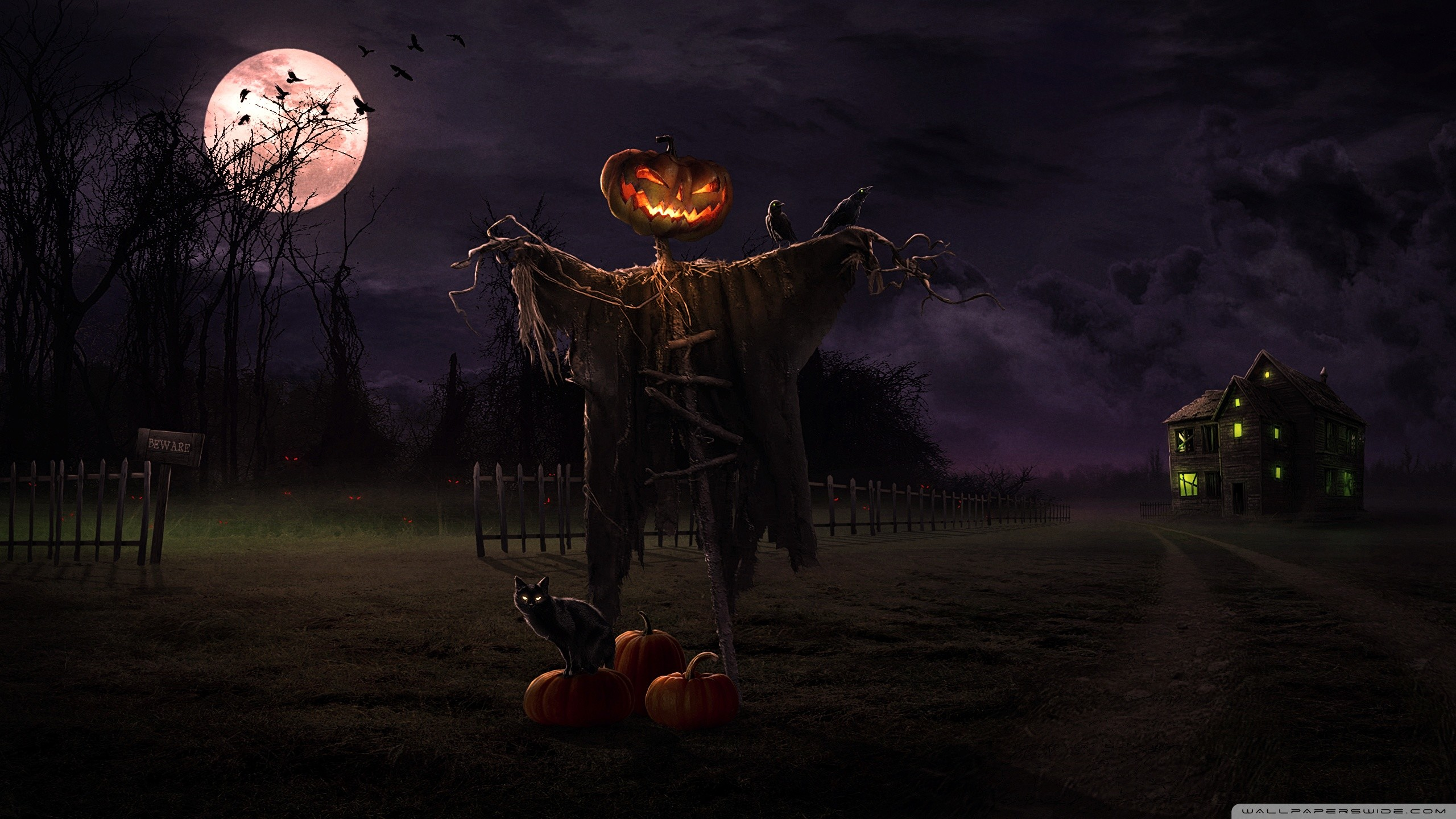 Scary Halloween Wallpapers and Screensavers 58 images 2560x1440