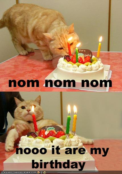 happy birthday funny picture best happy birthday funny picture hd 429x612