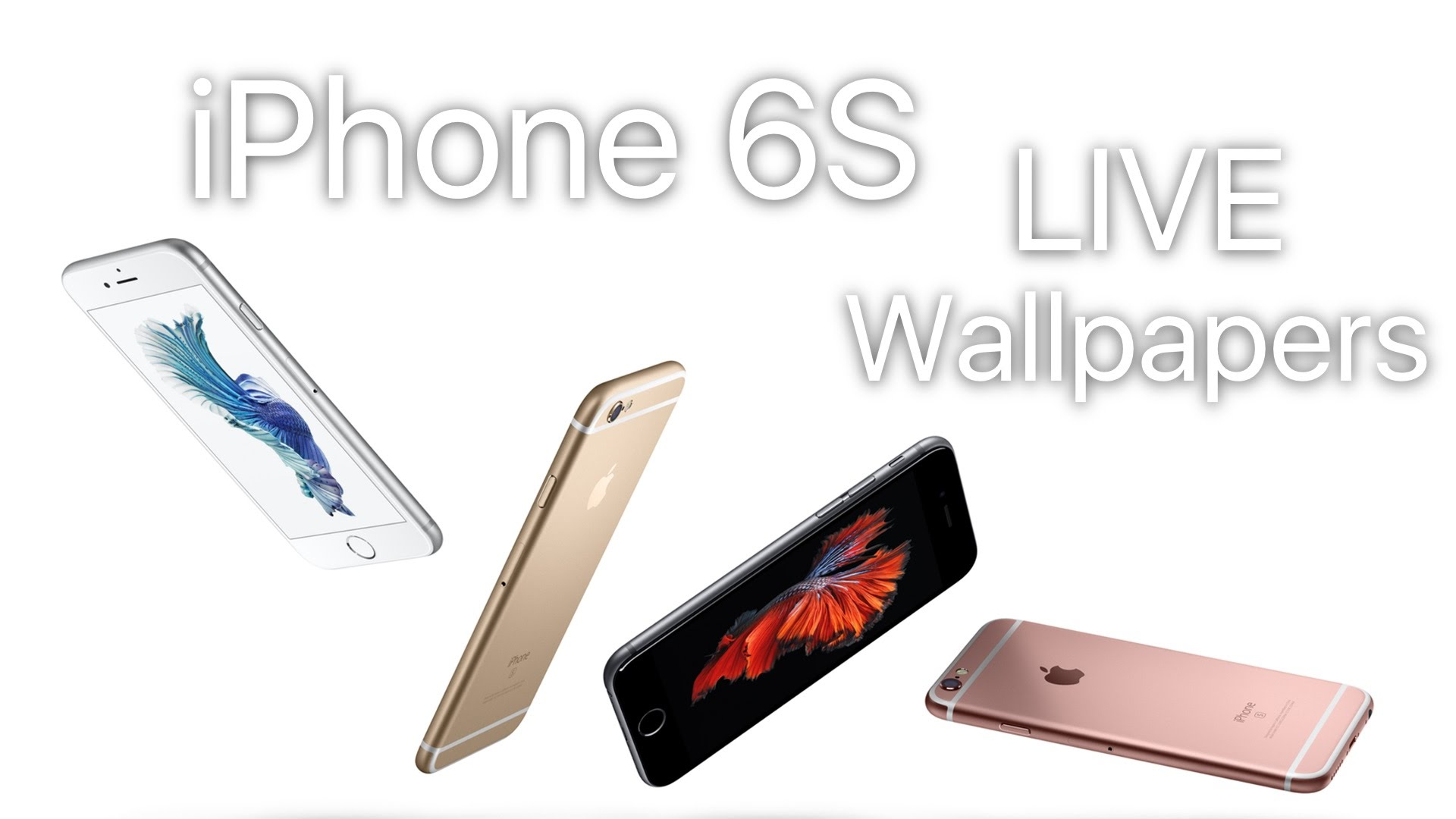 Get iPhone 6S LIVE WALLPAPERS on iOS 8 Devices - YouTube