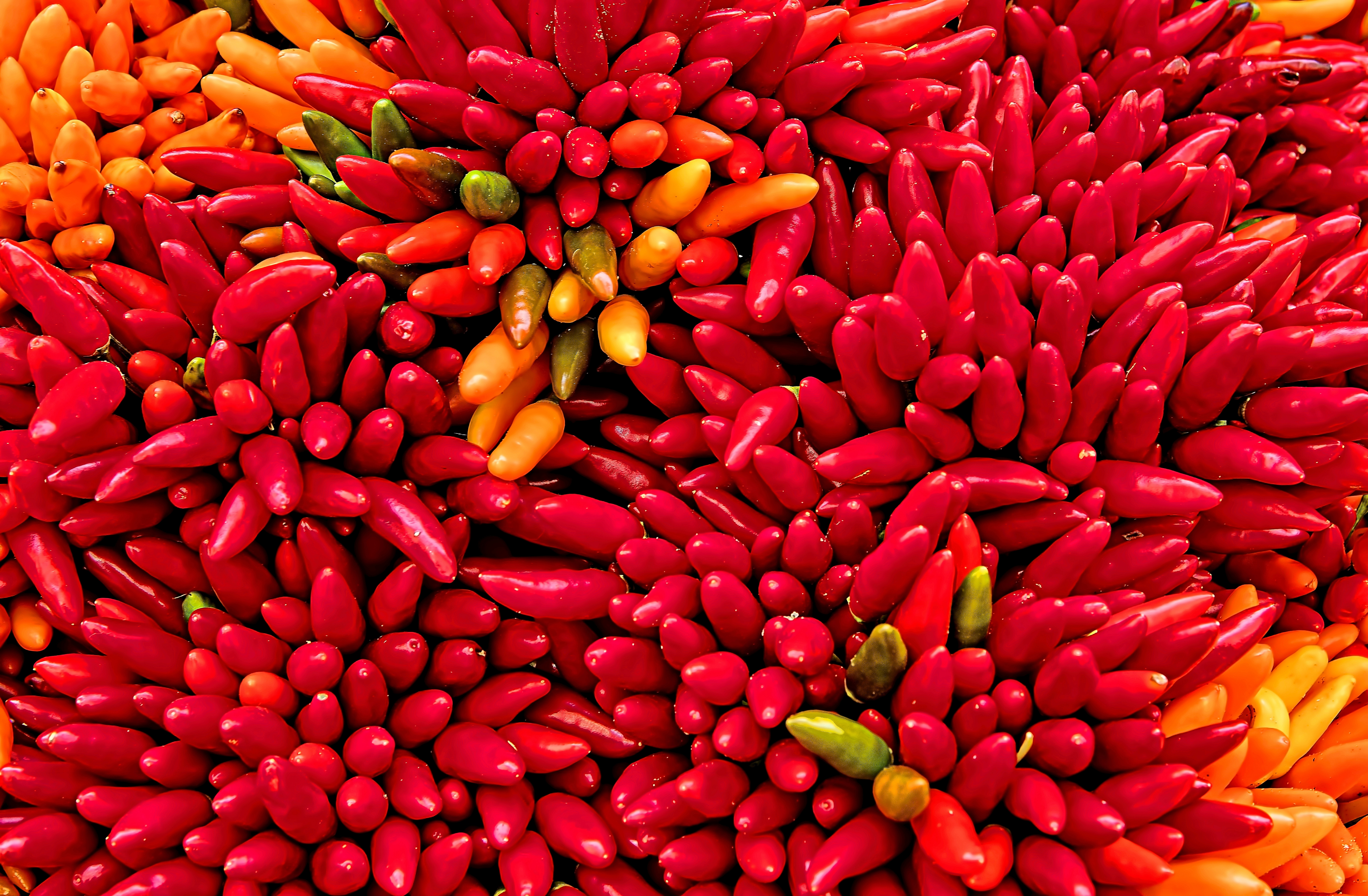 5317365 8000x5240 wallpaper vegitable market chili color 8000x5240