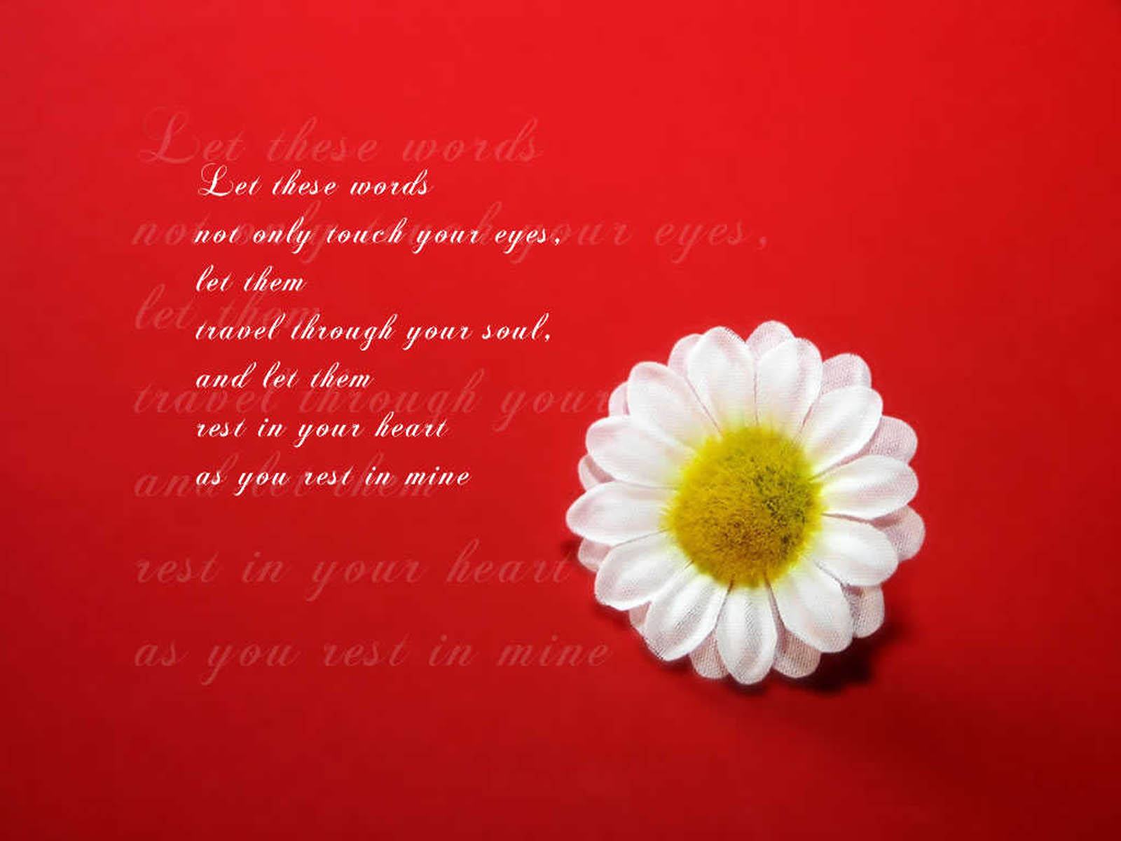 wallpapers love quotes desktop wallpapers