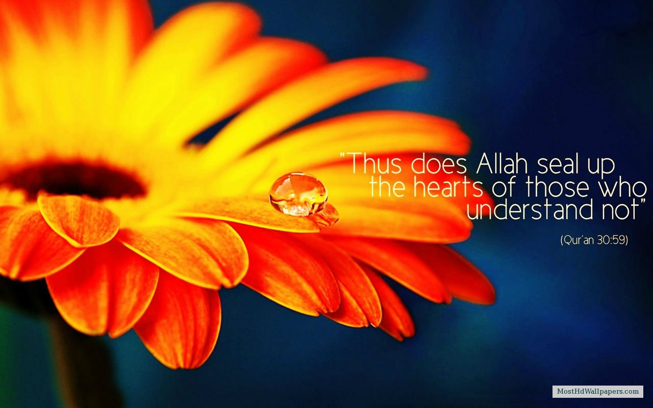 Download Beautiful Islamic Quotes Most HD Wallpapers Pictures 1280x800