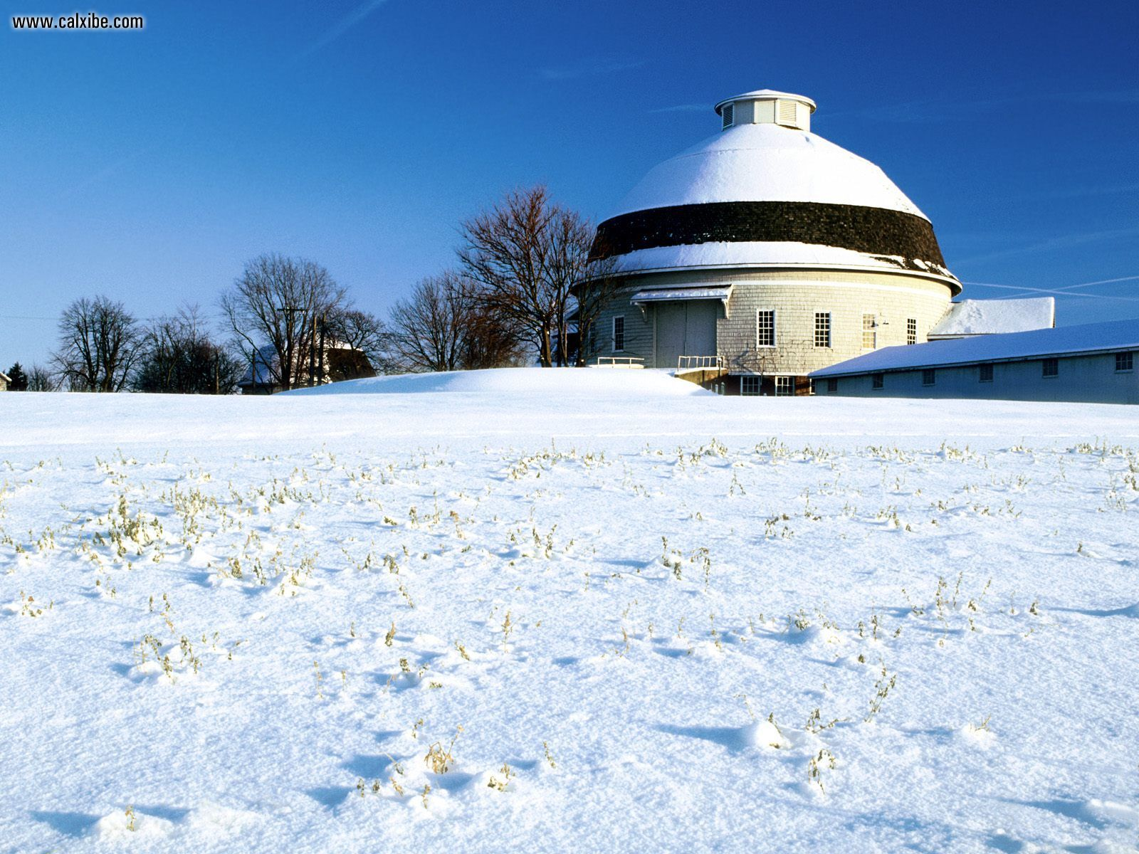 Winter Dome University of Illinois desktop wallpaper nr 4357 1600x1200