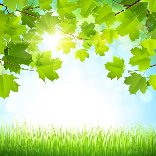 Sunlight with nature background art vector Over millions vectors 500x500