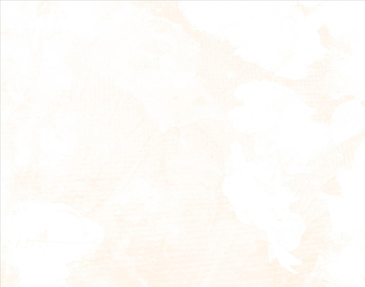 71 White Screen Wallpaper On Wallpapersafari