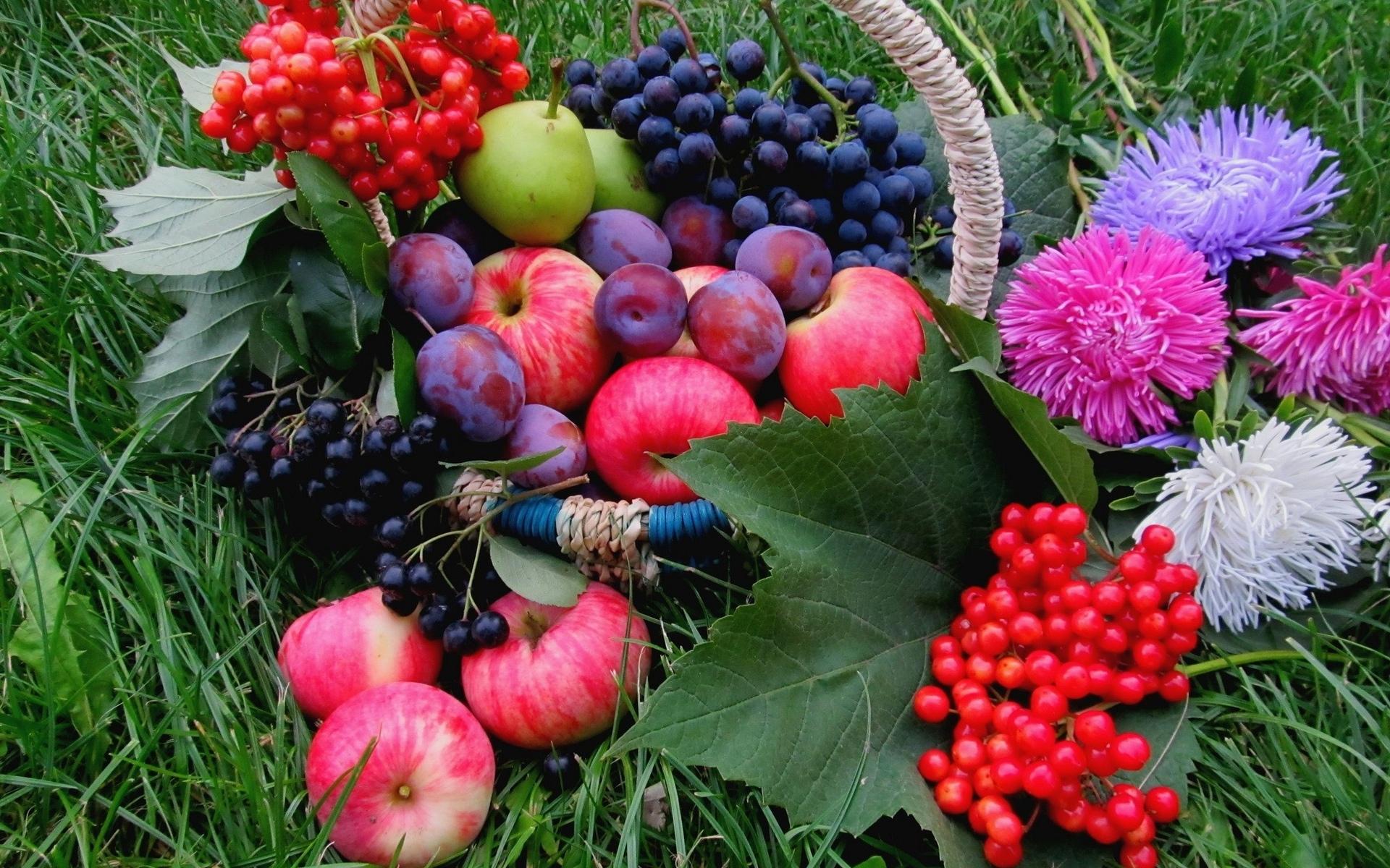 Vegetables fruits flowers wallpaper 1920x1200 67888 WallpaperUP 1920x1200