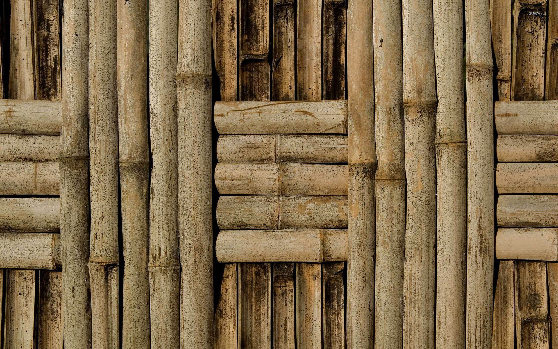 Bamboo Wallpaper For Walls Wallpapersafari