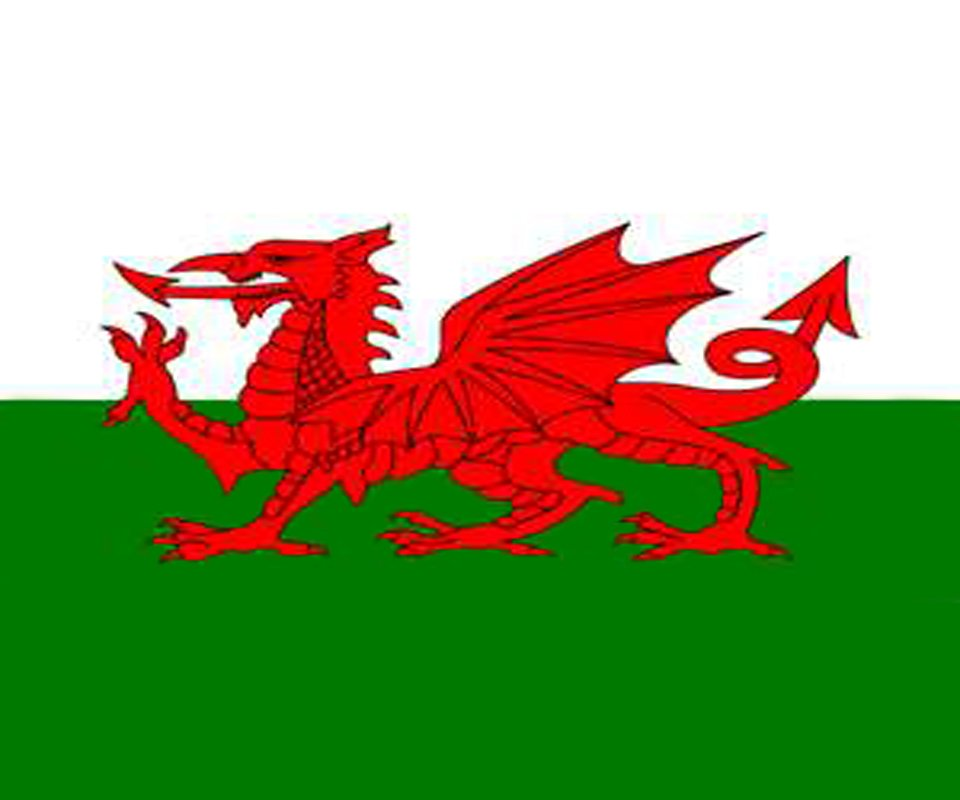 Welsh Flag Wallpaper Iphone 141489 welsh flagjpg 960x800