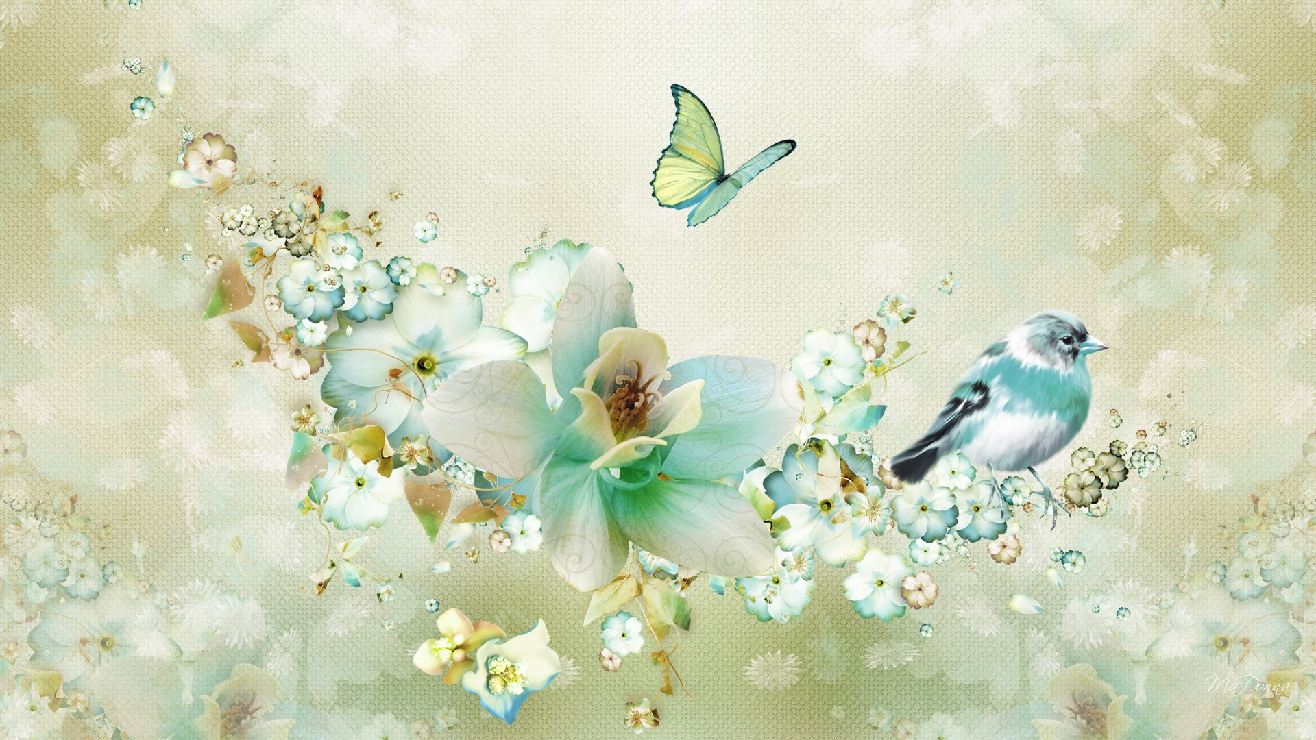 Flowers Birds and Butterfly 1920x1080