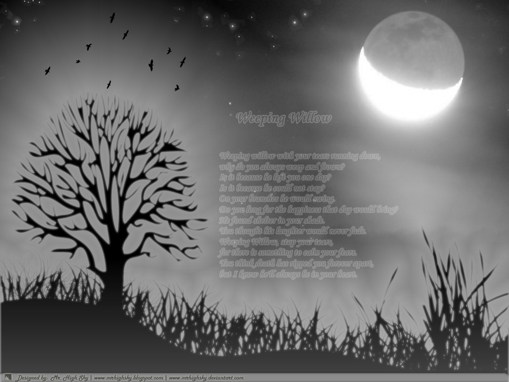 Mr High Sky Weeping Willow wallpapers 1024x768