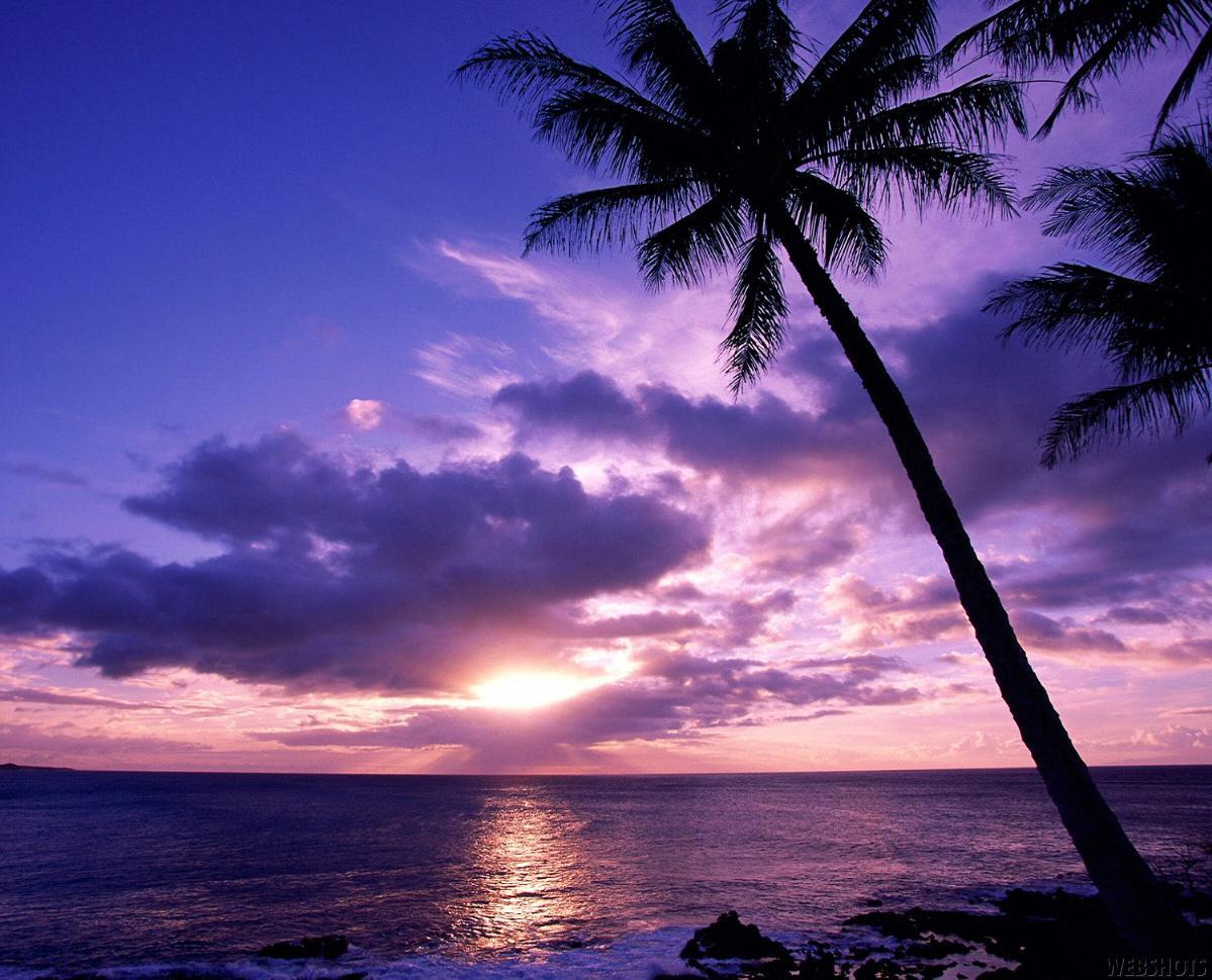 Sunset HD Beach Serene - Sunset Beach Serene