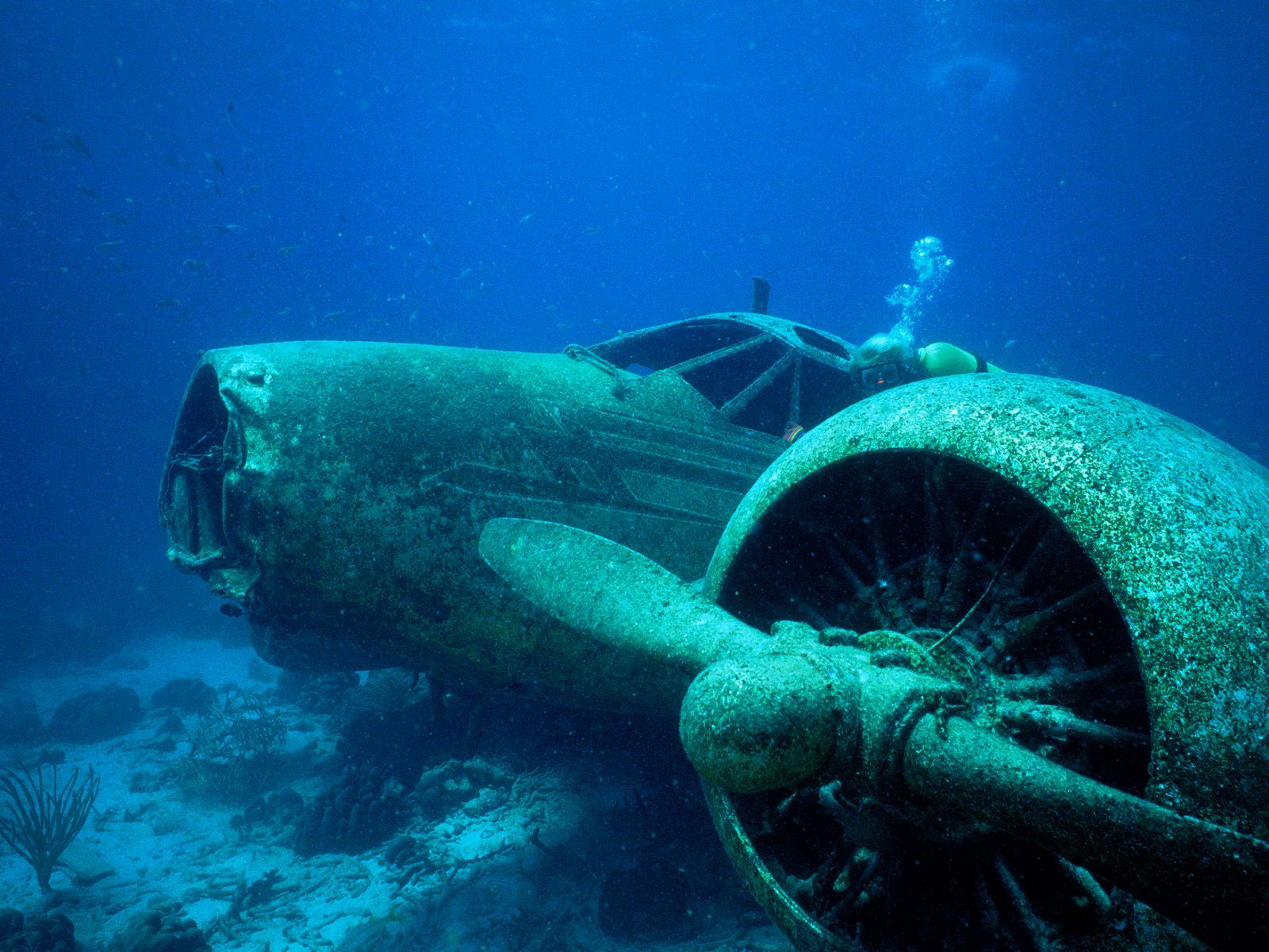 Crash Plane Wallpapers here you can see Underwater Airplane Crash 1600x1200