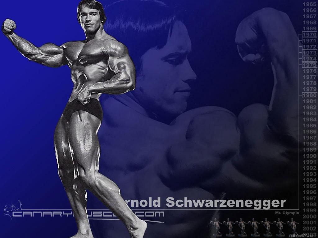 Women Who Rock Female Body Building Wallpaper Fitness Men Body 1024x768
