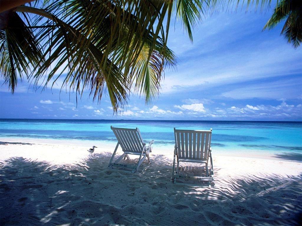 Download Beach Scene Beautiful Beach Wallpaper Full HD Wallpapers 1024x768