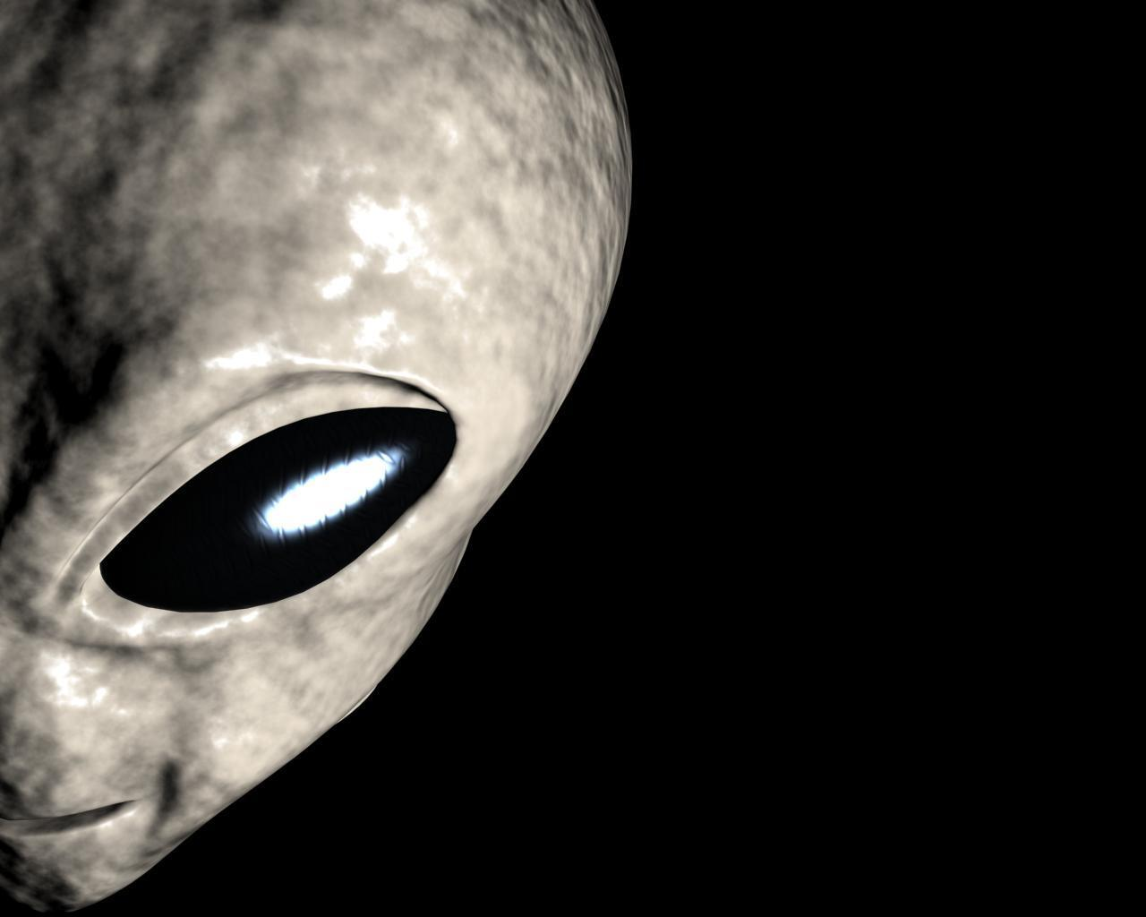 Alien Wallpapers 1280x1024