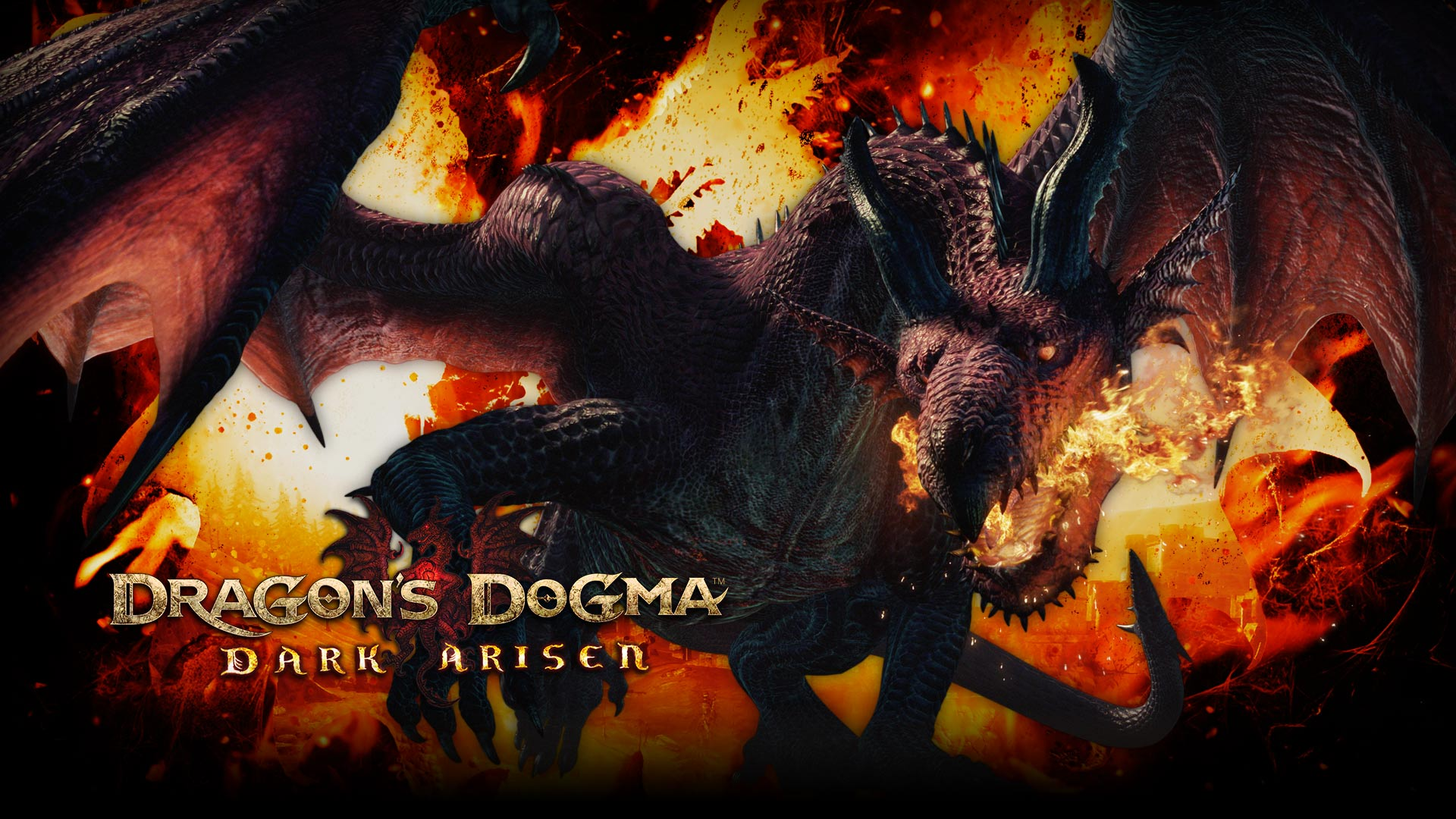 Free Download Dragon Wallpaper From Dragons Dogma Dark Arisen