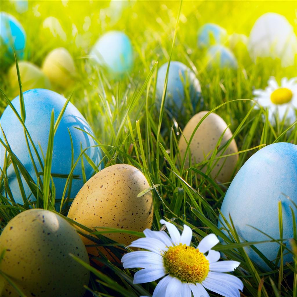 Easter Egg Hunt iPad Air Wallpaper Download iPhone Wallpapers iPad 1024x1024