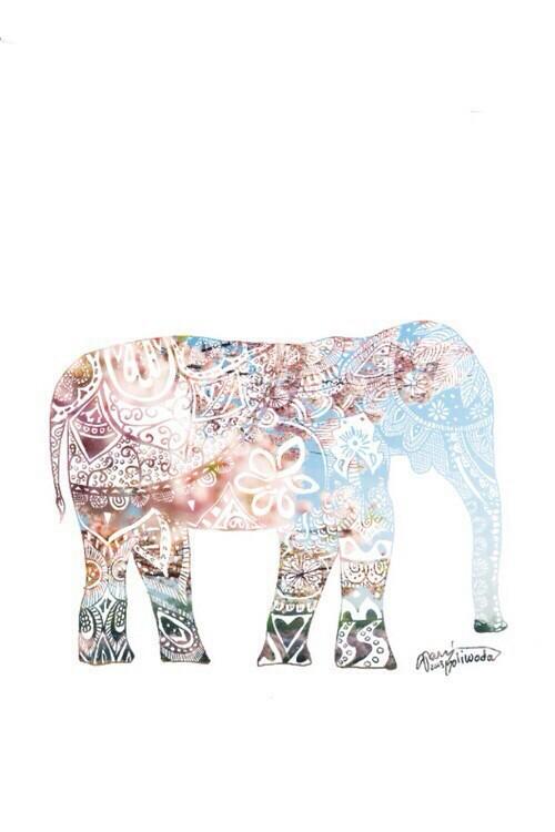 elephant background Tumblr 500x750