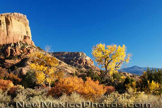 Fall foliage enhances an already spectacular view from beneath Kitchen 540x360