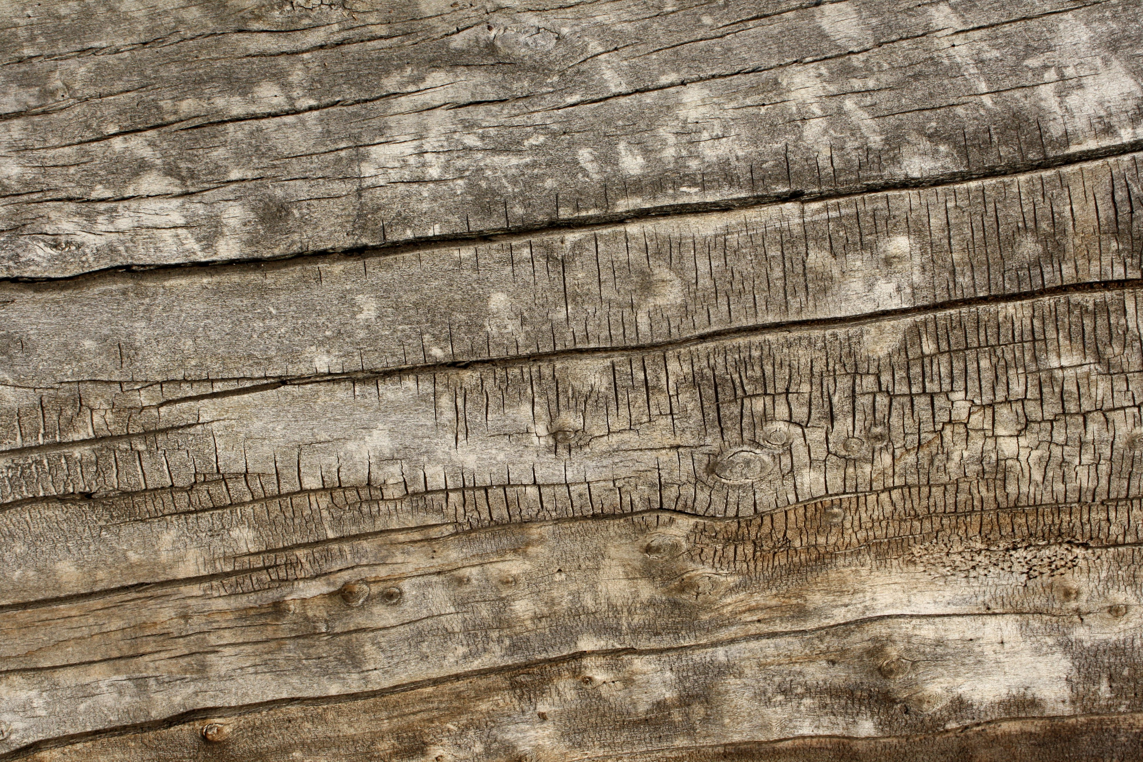 Old Weathered Wood Texture Picture Photograph Photos Public 3888x2592