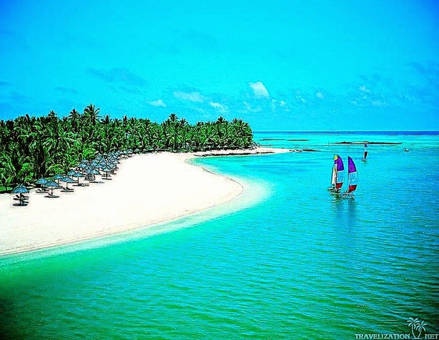 Download Beach Scene Beautiful Beach Wallpaper Full HD Wallpapers 901x698