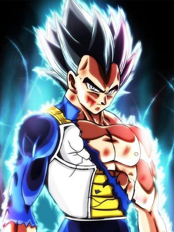Vegeta Ultra Instinct Wallpaper HD for Android   APK Download 600x800