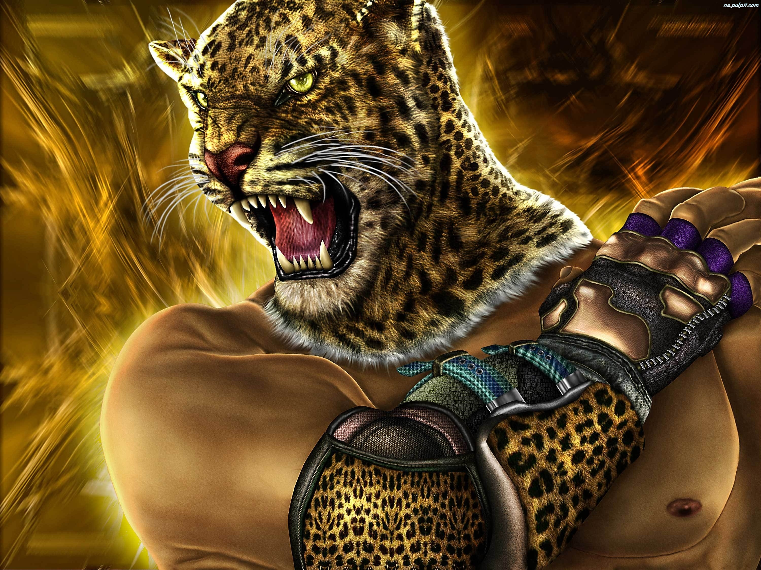 Tekken 5 King Na Pulpit 3000x2250
