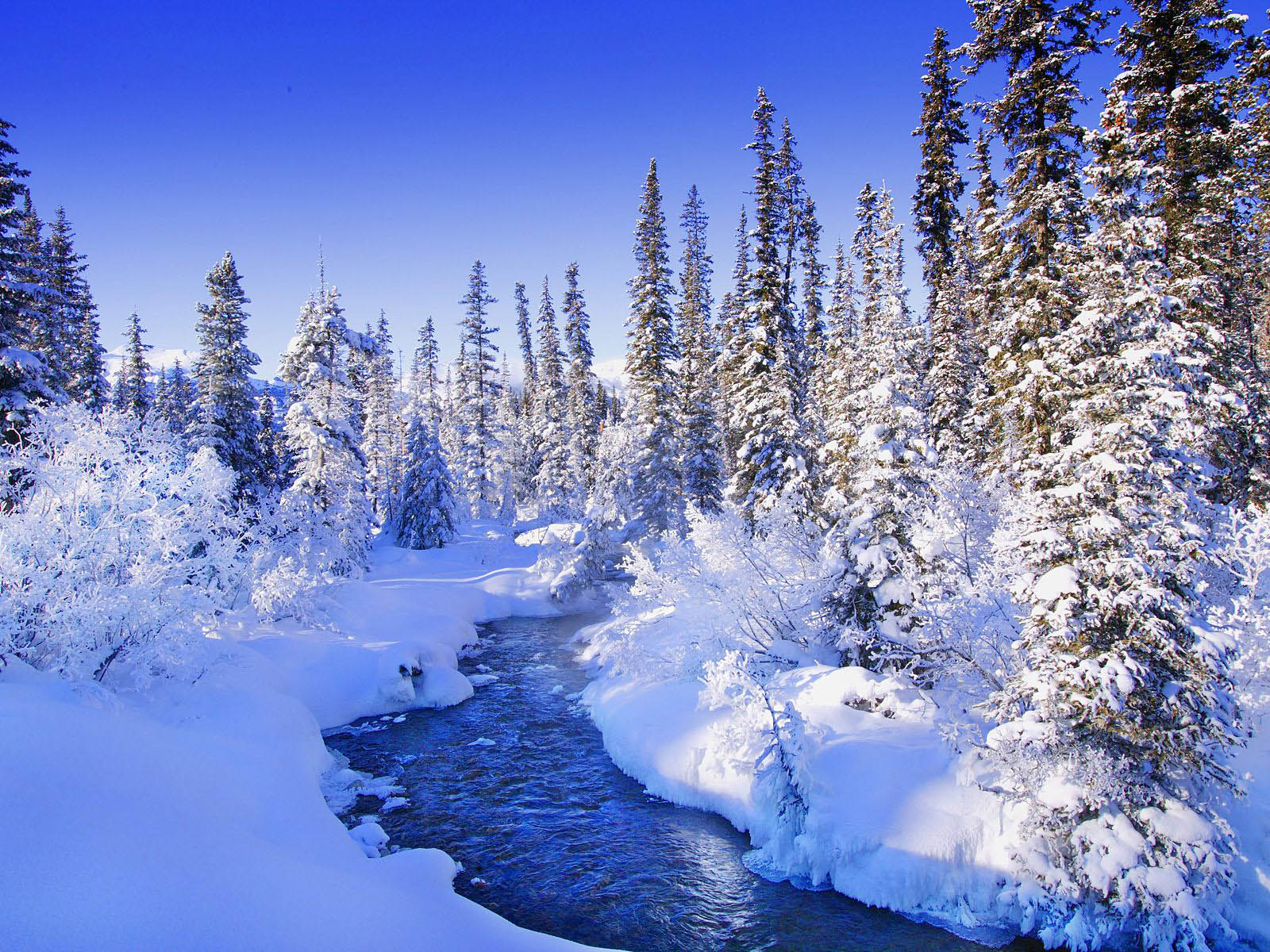 Snow Wallpapers Backgrounds Photos Picturesand Images for 1600x1200