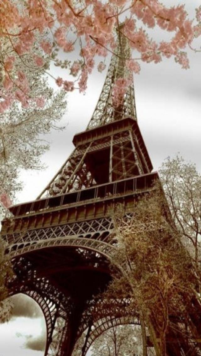 Eiffel Tower Wallpaper For Iphone Wallpapersafari