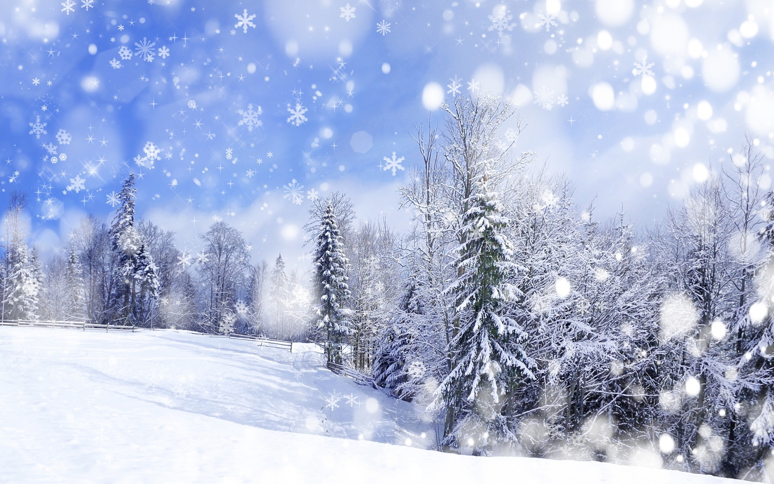 Winter Wallpapers HD 2560x1600