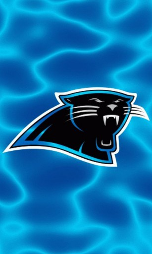 Carolina Panthers Wallpaper For Phone Wallpapersafari