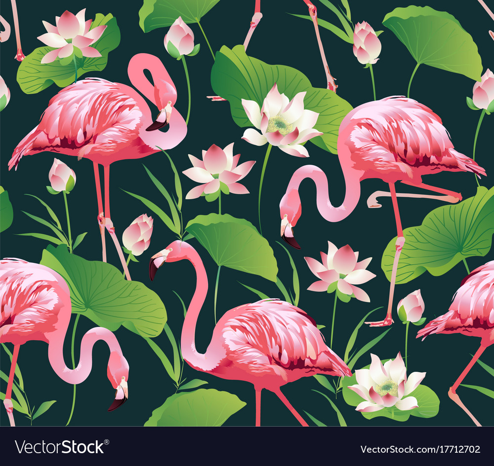 Flamingo bird and tropic flowers background Vector Image 1000x945