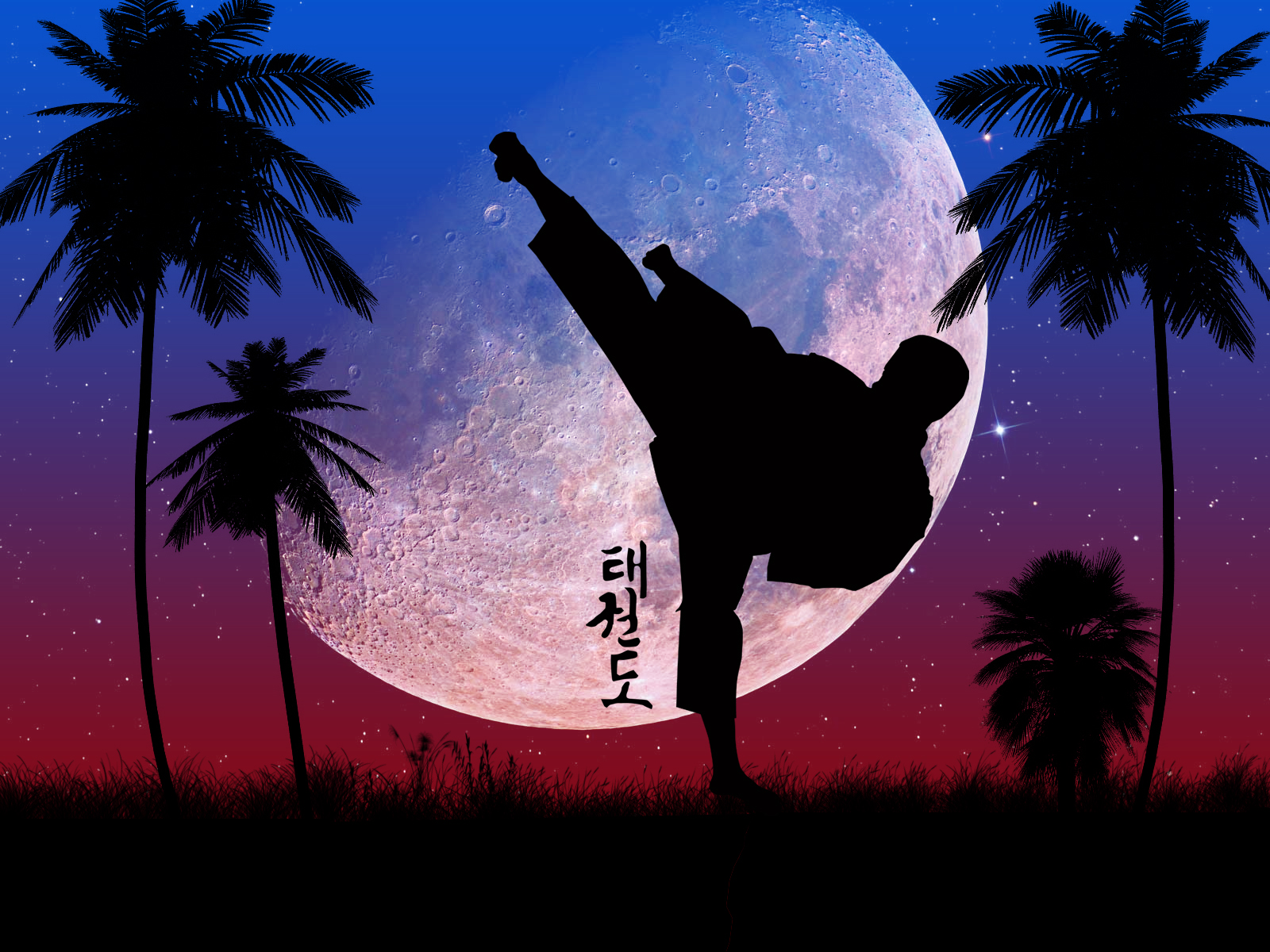 taekwondo wallpapers wallpapersafari