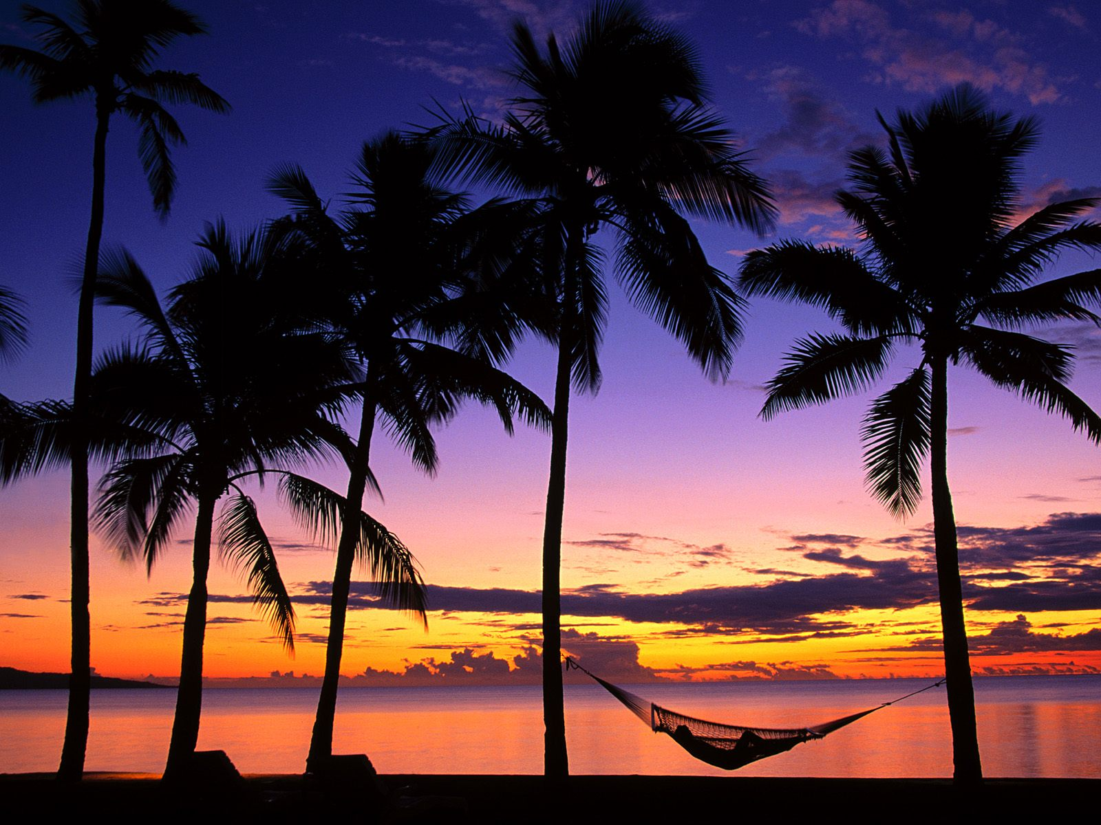 Tropical Island Sunset Wallpaper wwwimgkidcom   The 1600x1200