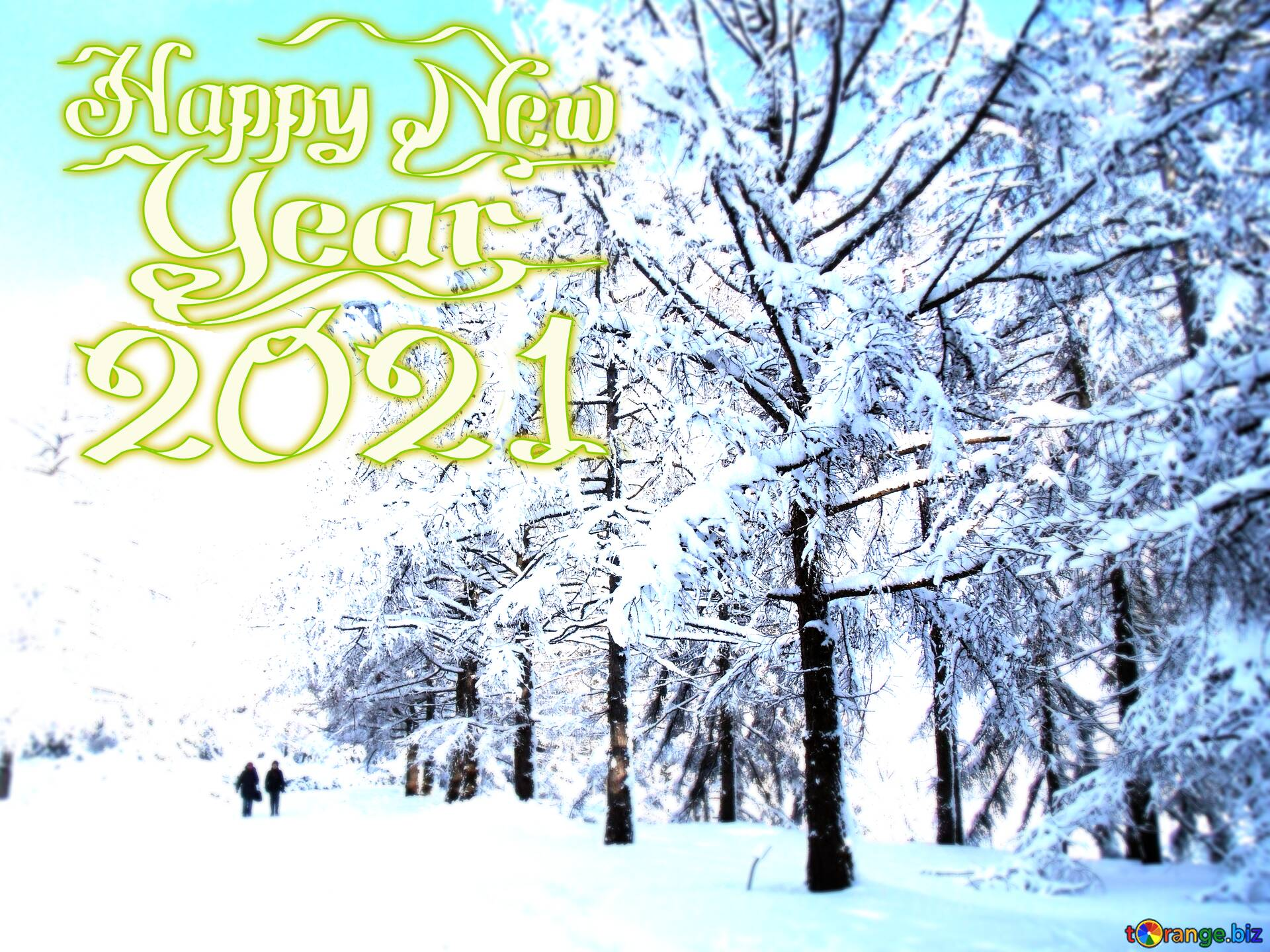 Download picture The Snow Winter forest happy new year 2021 1920x1440