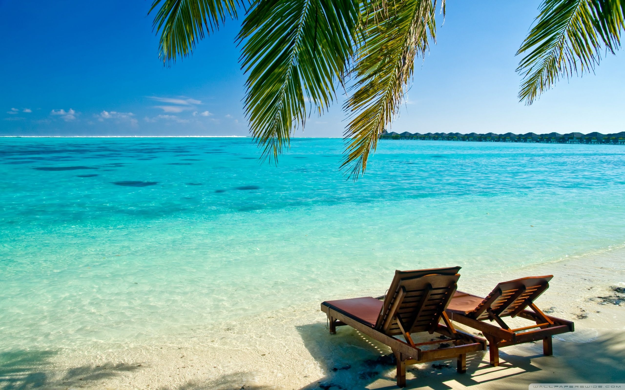 Beach Vacation Wallpapers   Top Beach Vacation Backgrounds 2560x1600