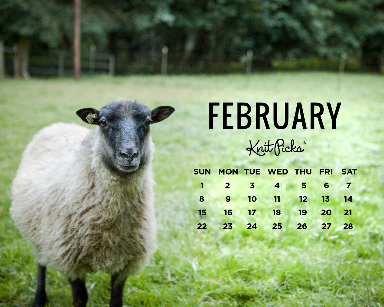February Desktop Calendar   KnitPicks Staff Knitting Blog 1280x1024