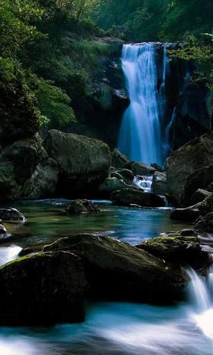 3d waterfall wallpaper download   wwwhigh definition wallpaper 307x512