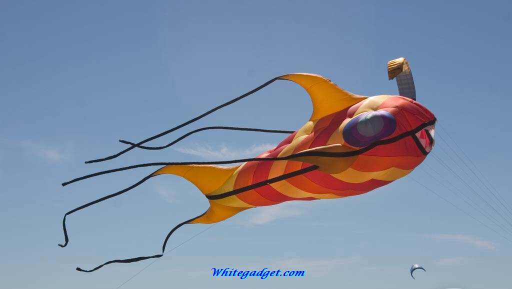 91745d1325657951 kite wallpaper kite wallpaper wallpapersjpg 1024x578